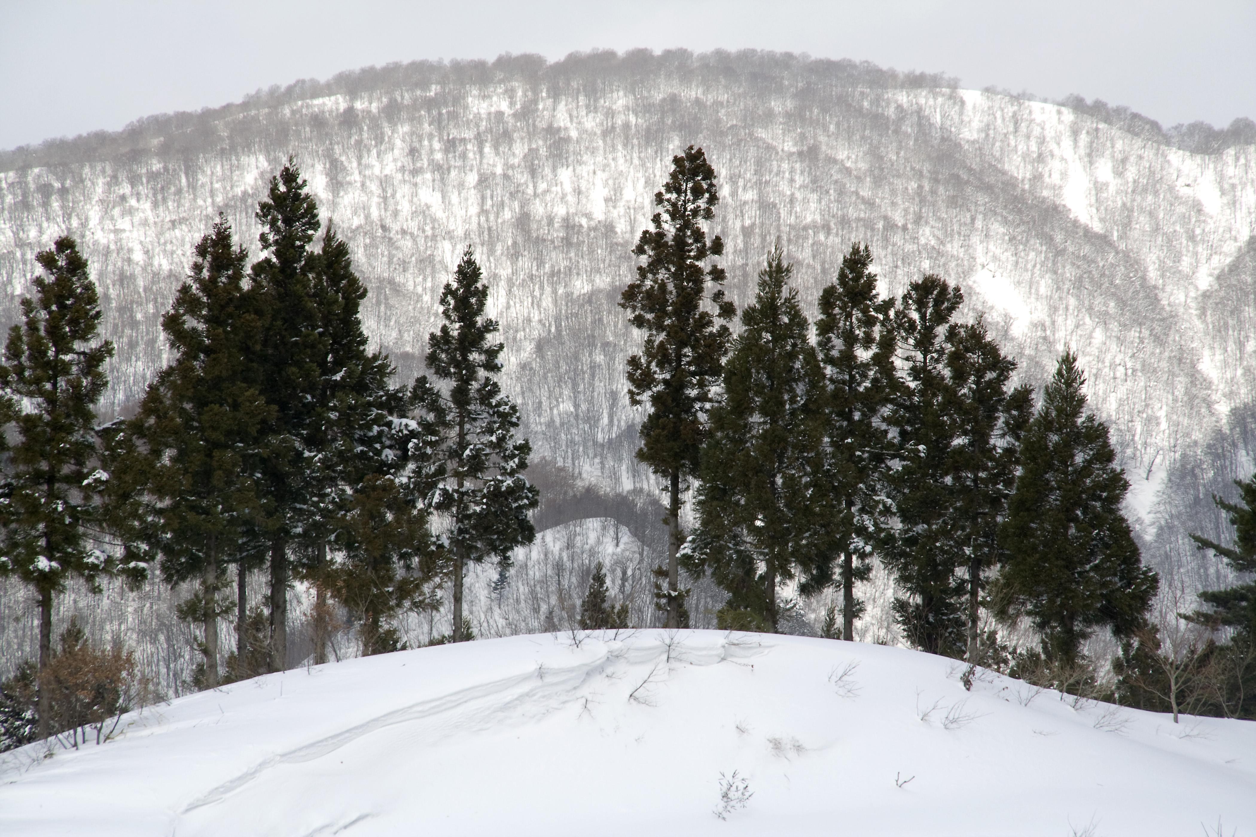 九州のおすすめスキー場は?子供や初心者も楽しめる人気のゲレンデ情報!