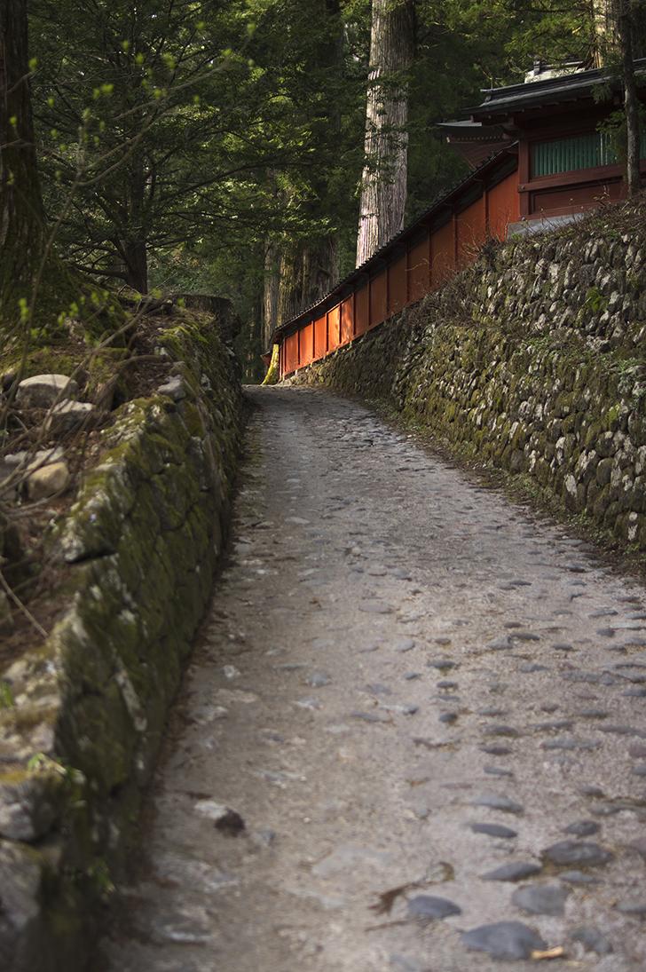 日光・滝尾神社のアクセスやご利益は?人気のパワースポットでお守りはおすすめ!