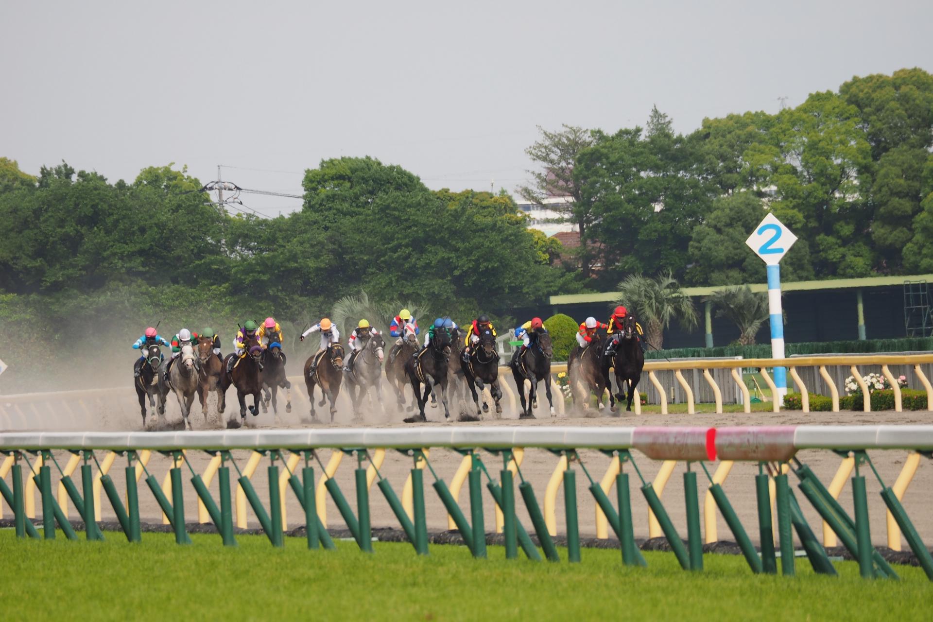 東京競馬場はグルメの宝庫!おすすめフードまとめ!競馬だけじゃない!