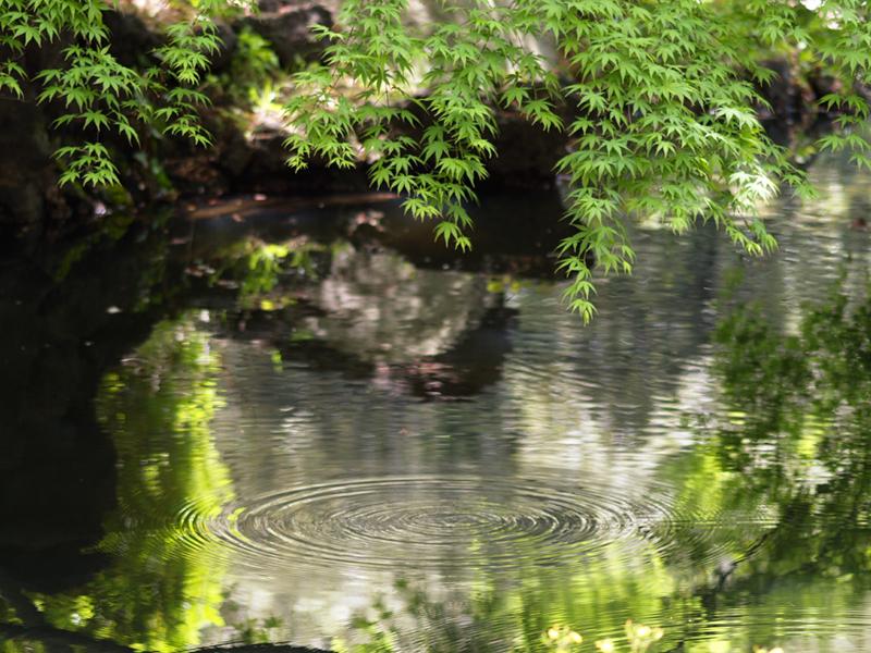 青森県むつ市の観光をまとめて紹介!見所やランチなど、夜は花火と居酒屋で!