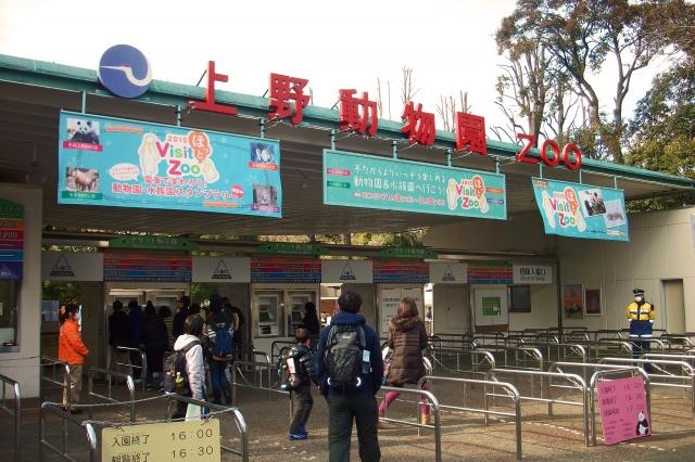 上野動物園のお土産おすすめランキング!パンダのお菓子が人気!