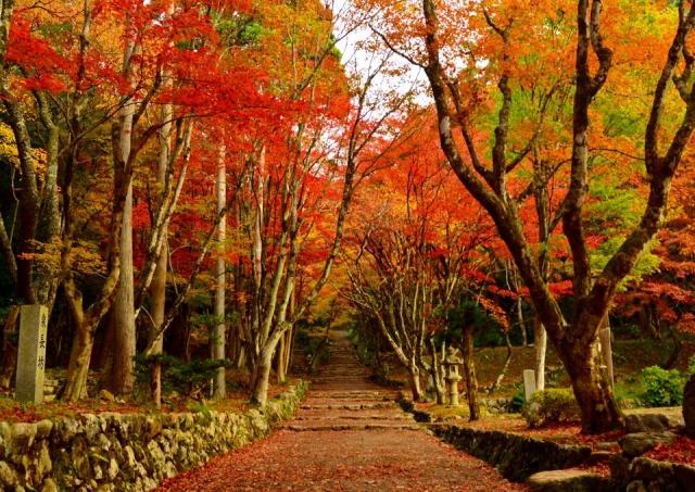 関西おすすめ絶景スポット特集!温泉やカフェからの眺めも最高!