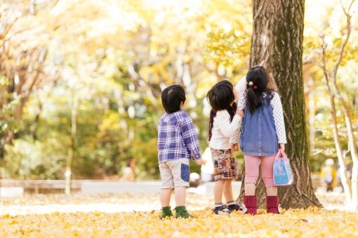 自由が丘の公園情報!広くて駅チカ!子供に人気の遊具もあり!
