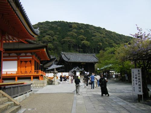 京都で人気の宿坊ランキング!座禅・写経や精進料理も!気になる予約方法は?