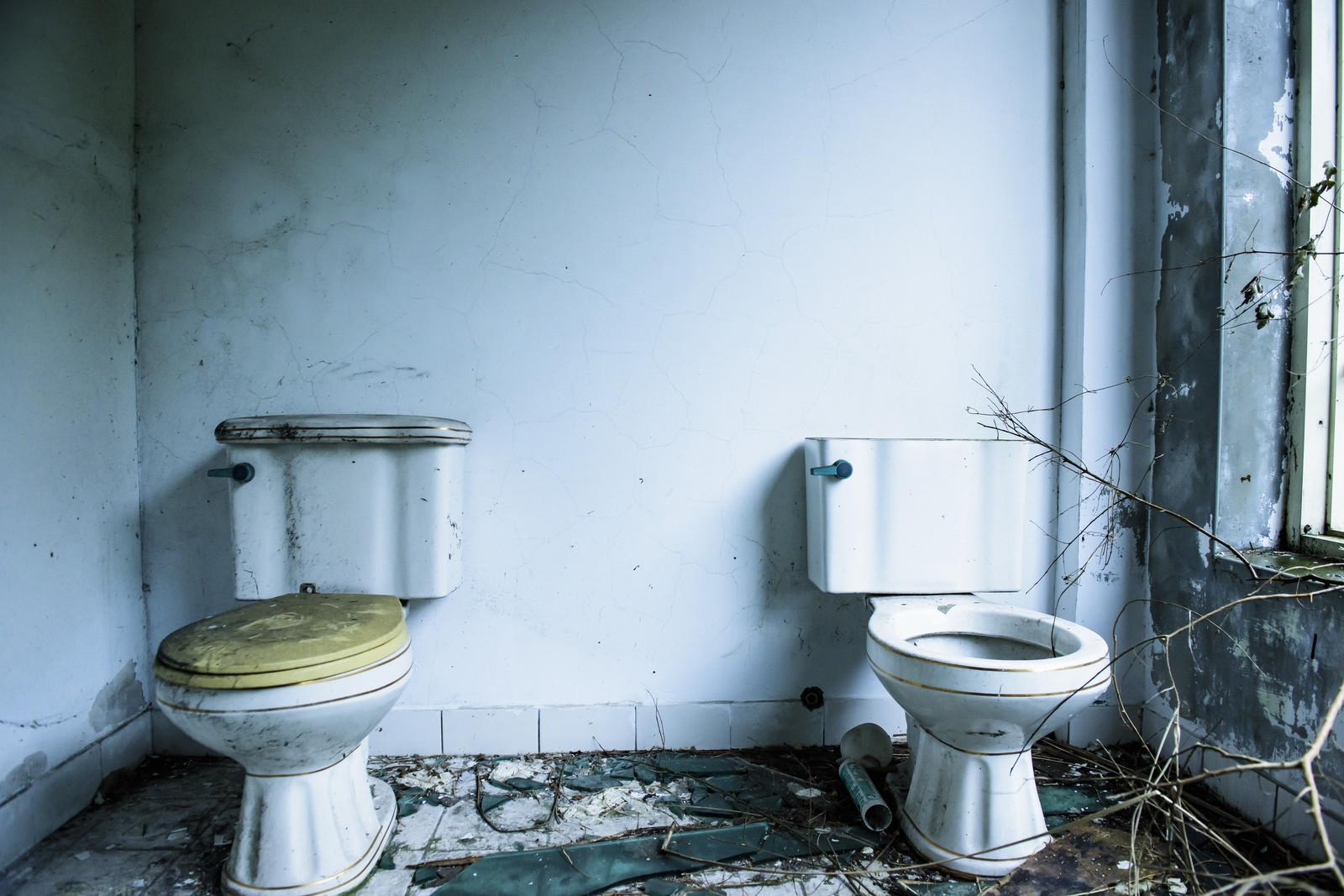 台湾のトイレ事情!トイレットペーパーは持参&流せない!?