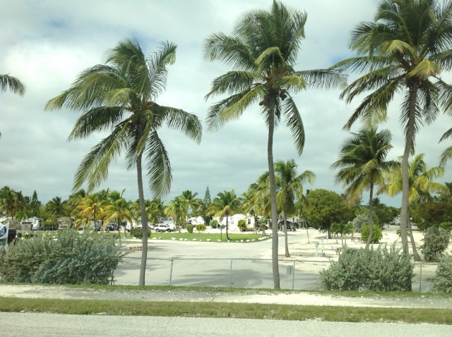 フロリダの天気・気温・服装を季節で解説!旅行計画のベストシーズンは?