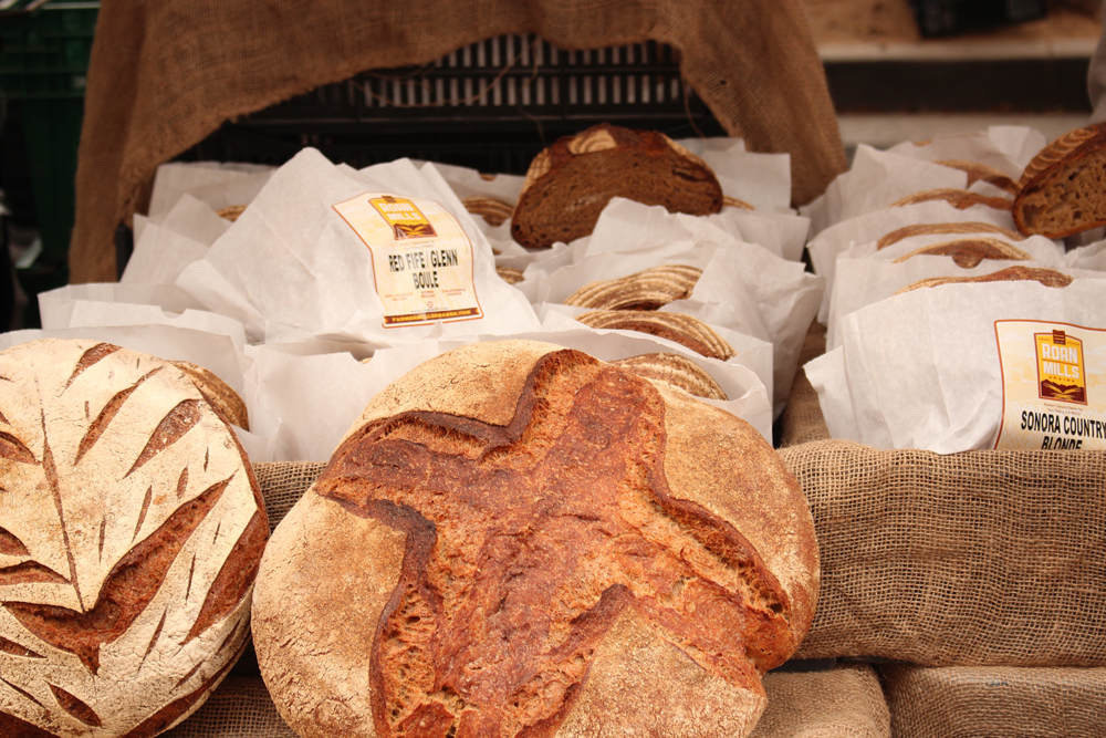 つくばパン屋ランキングTOP9!おすすめの人気店がたくさん!売り切れ必至!