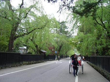 角館の武家屋敷7選!駐車場はある?桜と紅葉の時期の観光は人気!