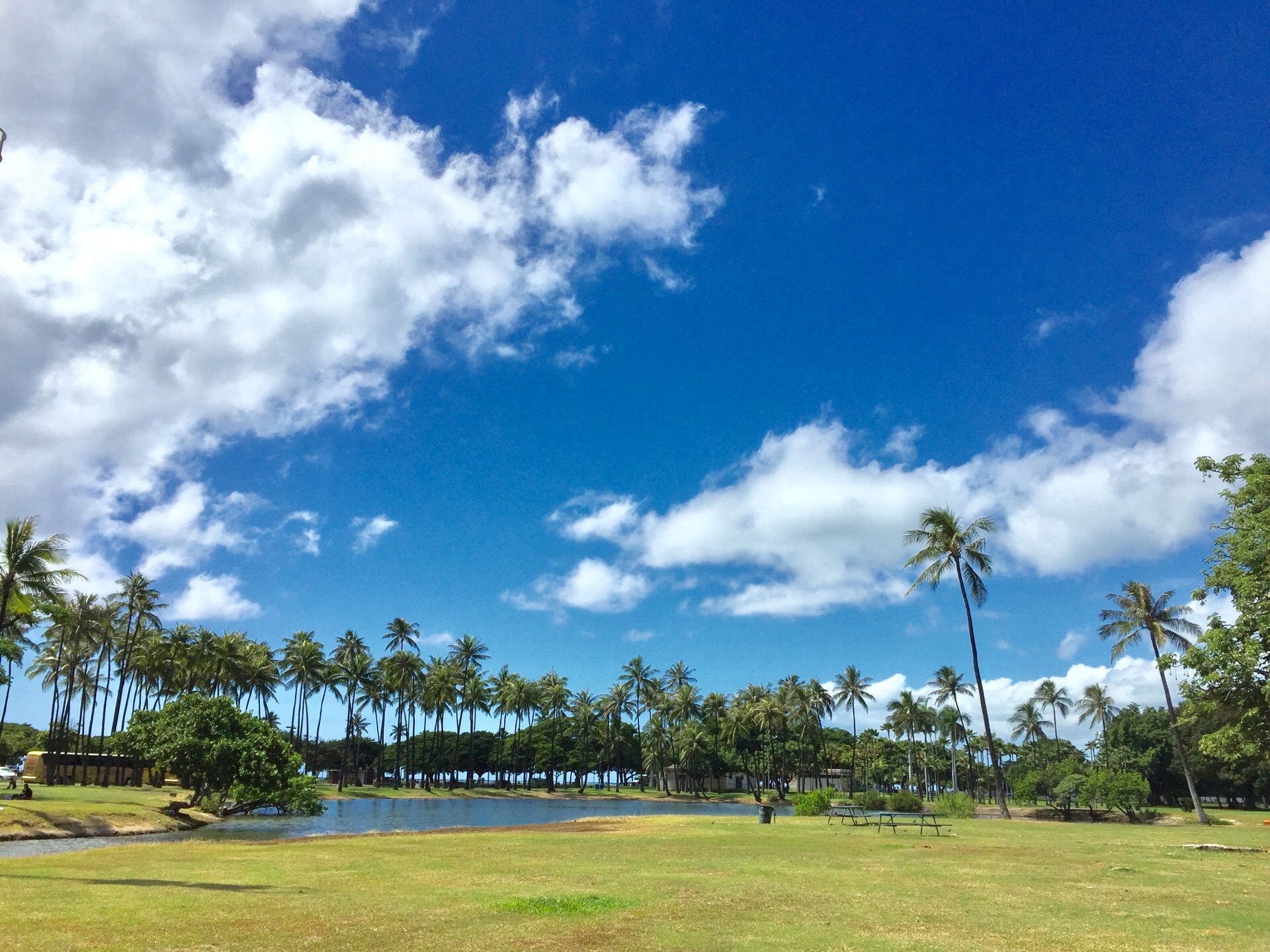 マリポサ(ハワイ)のランチ!海を一望できるレストランのおすすめメニューは?