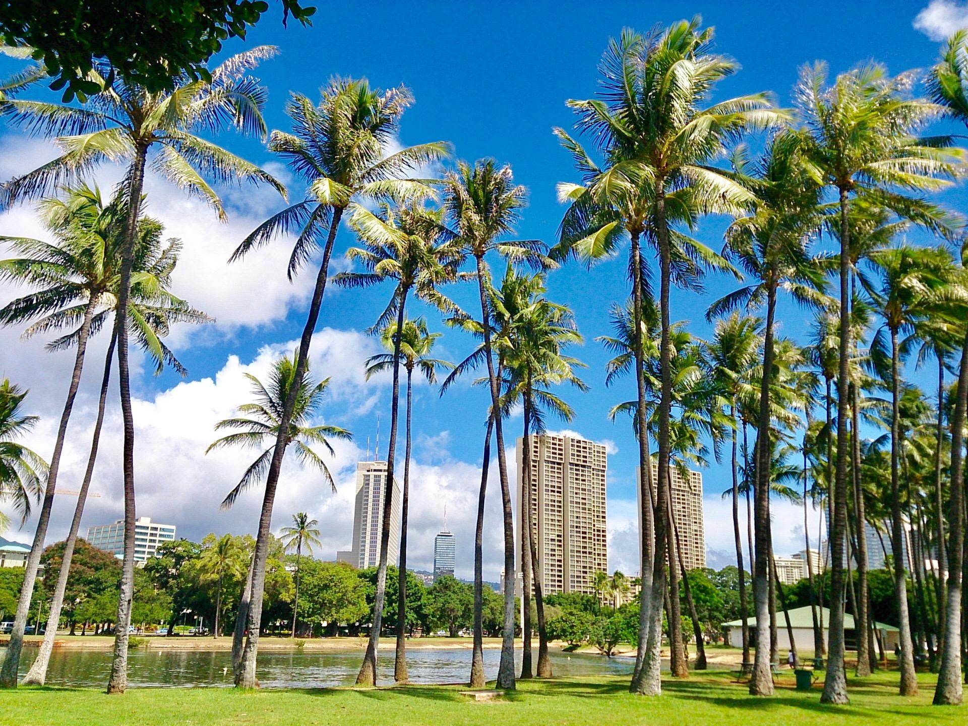 ニーマンマーカスでハワイのお土産を買おう!おすすめの限定品は何?