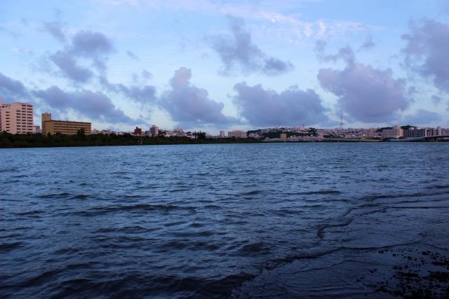 沖縄の漫湖とは?公園や湿地センターなど見どころ満載!生態系も豊か!