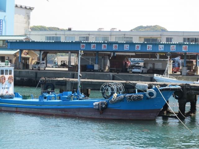 勝浦漁港は釣りやにぎわい市場の海鮮が人気!朝市やランチのおすすめは?