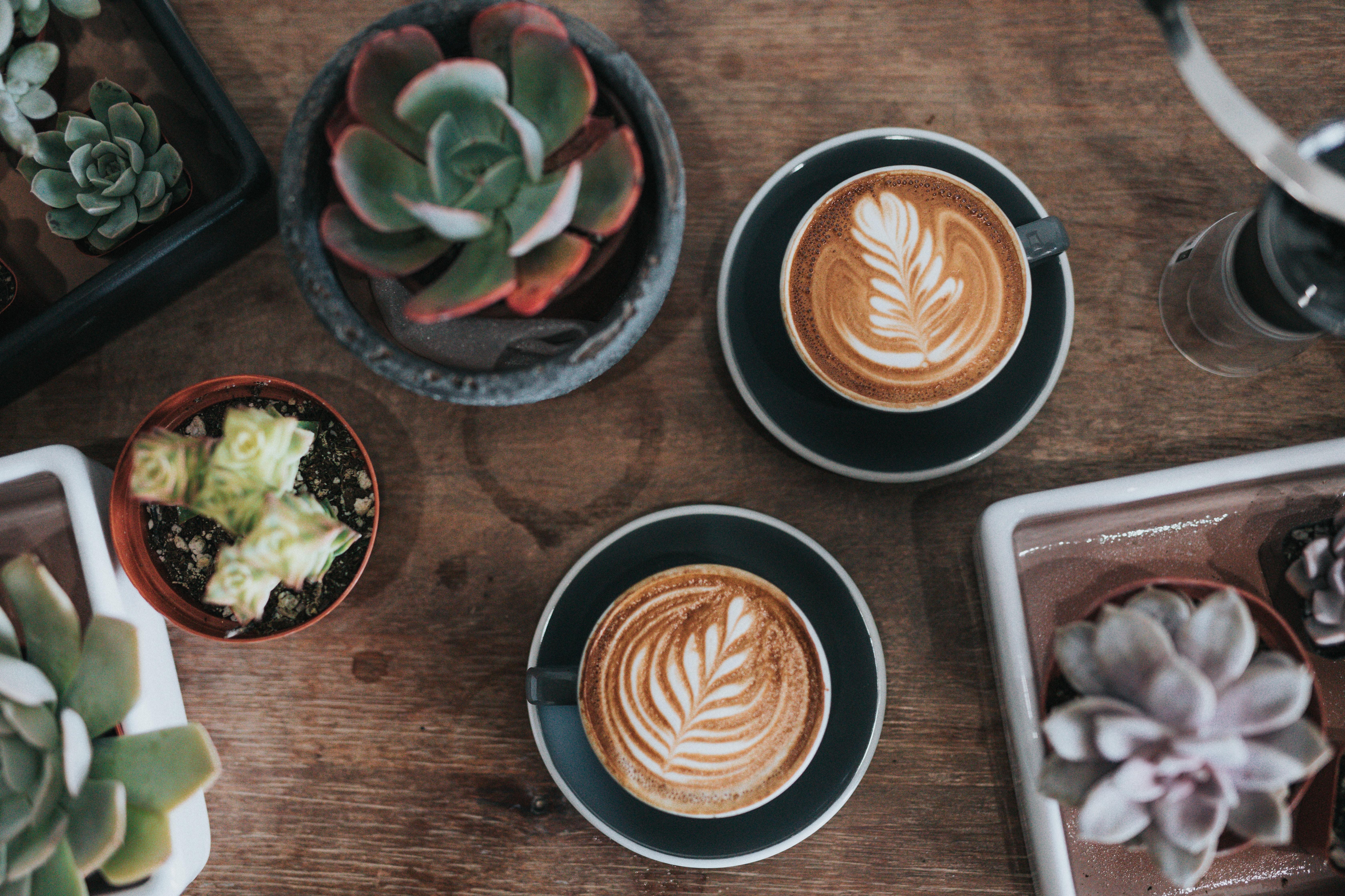 Dante Coffee(丹堤咖啡)台湾の人気コーヒーチェーンを調査!