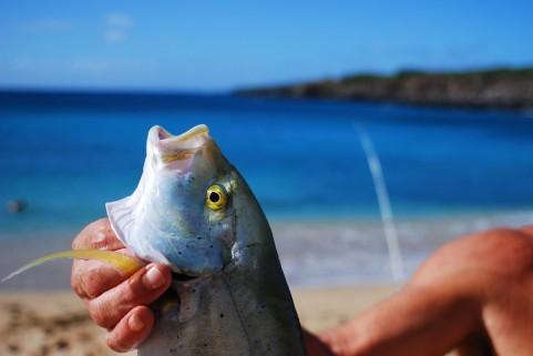熊本新港は親子で楽しめるおすすめ釣り場!近くに裏新港・砂浜あり!