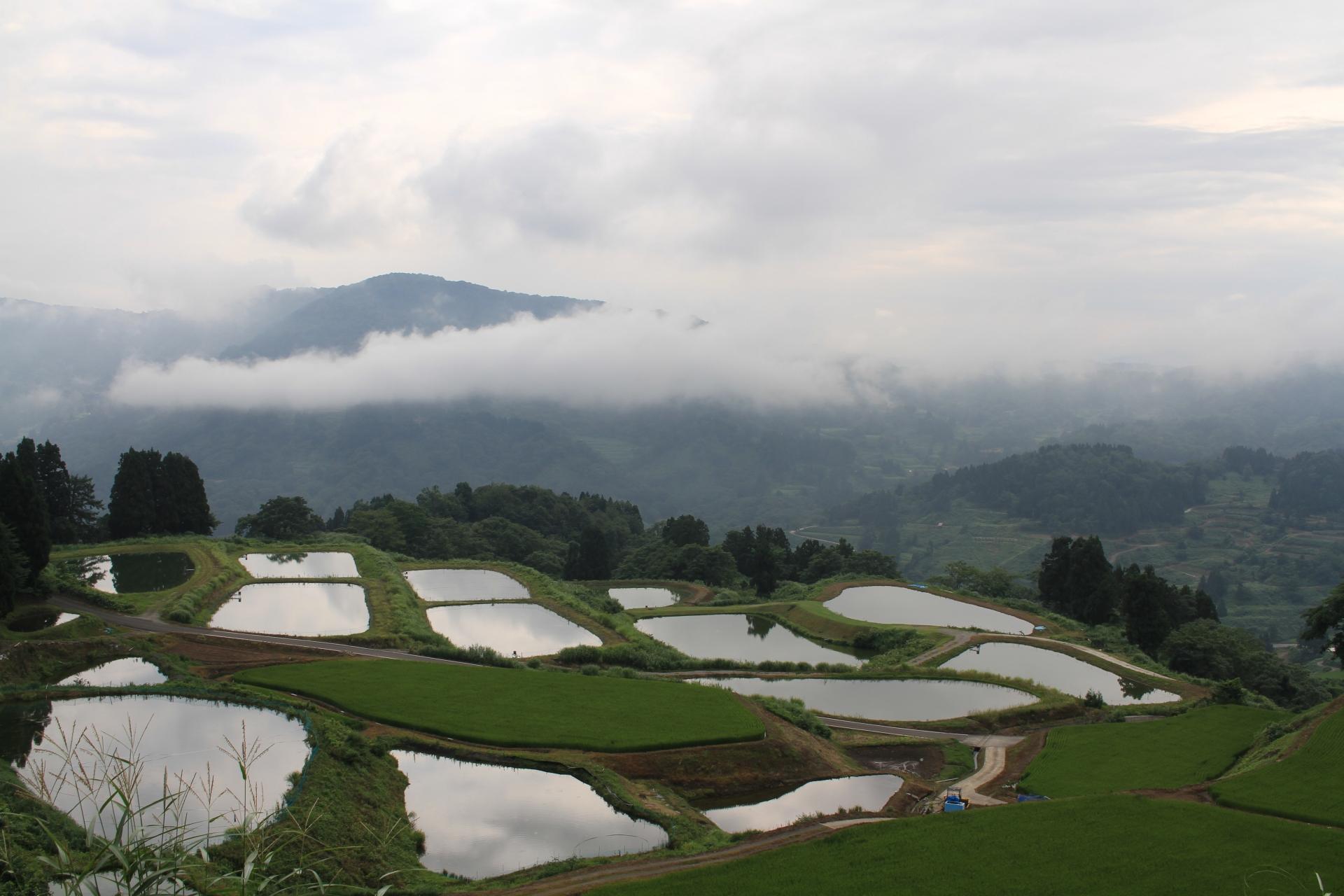 山古志観光は闘牛や棚田が見どころ!自然の絶景にも心癒されるおすすめの旅先!