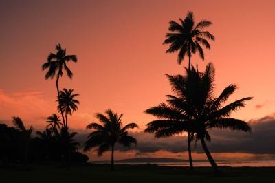 53 By The Seaはハワイの上級レストラン!ランチやメニューは?