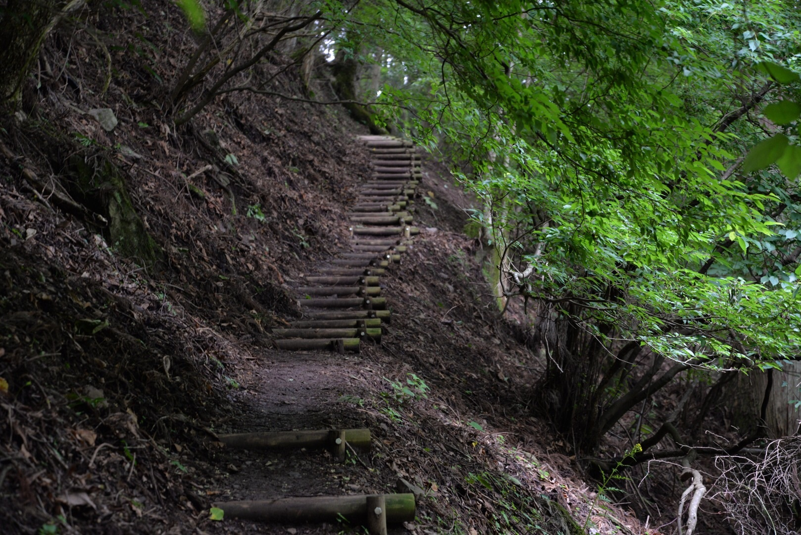 大峰山は女人禁制の地!登山コースやアクセスなどまとめてご紹介!