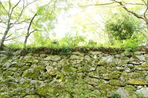 盛岡城跡公園は人気観光スポット!歴史や見どころなどお役立ち情報を紹介