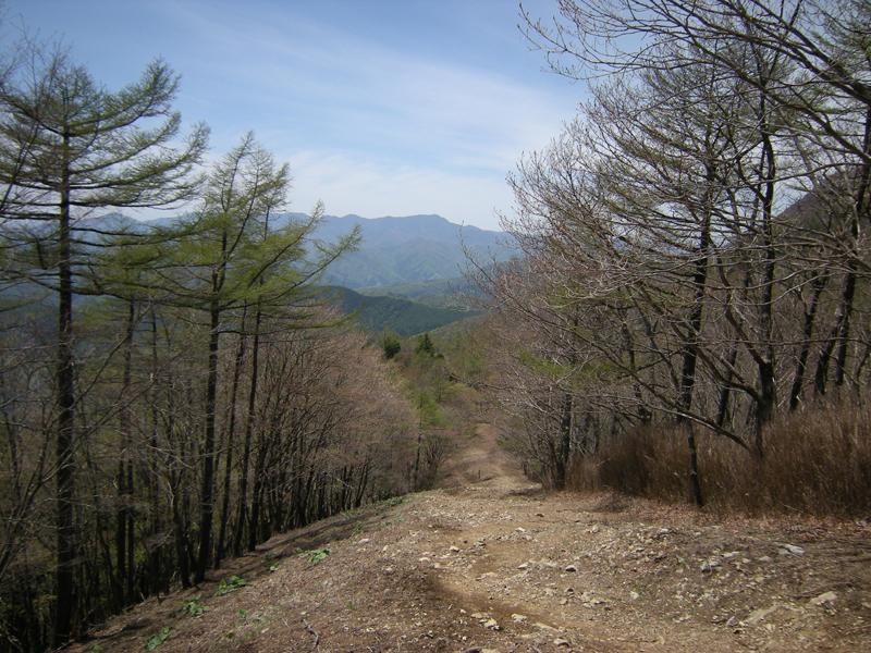川苔山へ登山に行こう!アクセス方法やコースに見どころもご紹介!