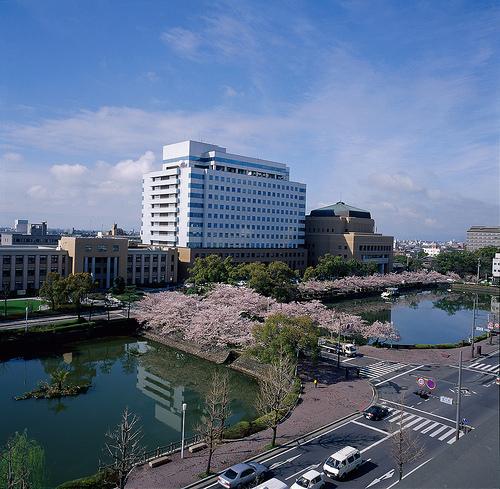 佐賀県庁の「星空の水族館」がアートすぎる!アクセスや見どころを紹介!