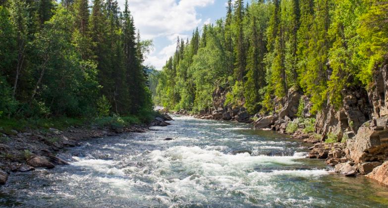 世界一長い川ランキングTOP10!最長の川はどこの国にある?