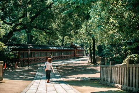 川越氷川神社のお守り一覧!人気の種類や値段・貰える時間も紹介