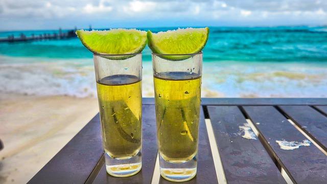 テキーラおすすめ銘柄19選!定番やさらにおいしくなる飲み方もご紹介!
