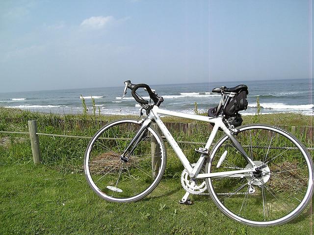 鹿島灘海浜公園は無料で遊べる人気スポット!潮干狩りやドッグランもおすすめ!