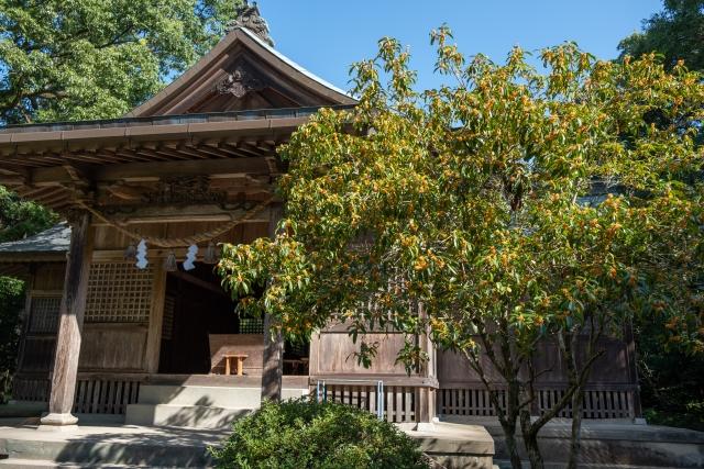 江田神社は宮崎の有名なパワースポット!ご利益やお守りに御朱印も紹介!