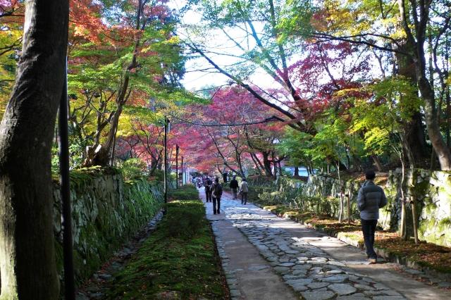 金剛輪寺は滋賀のパワースポット!国宝の本堂や国指定名勝の庭園もあり!
