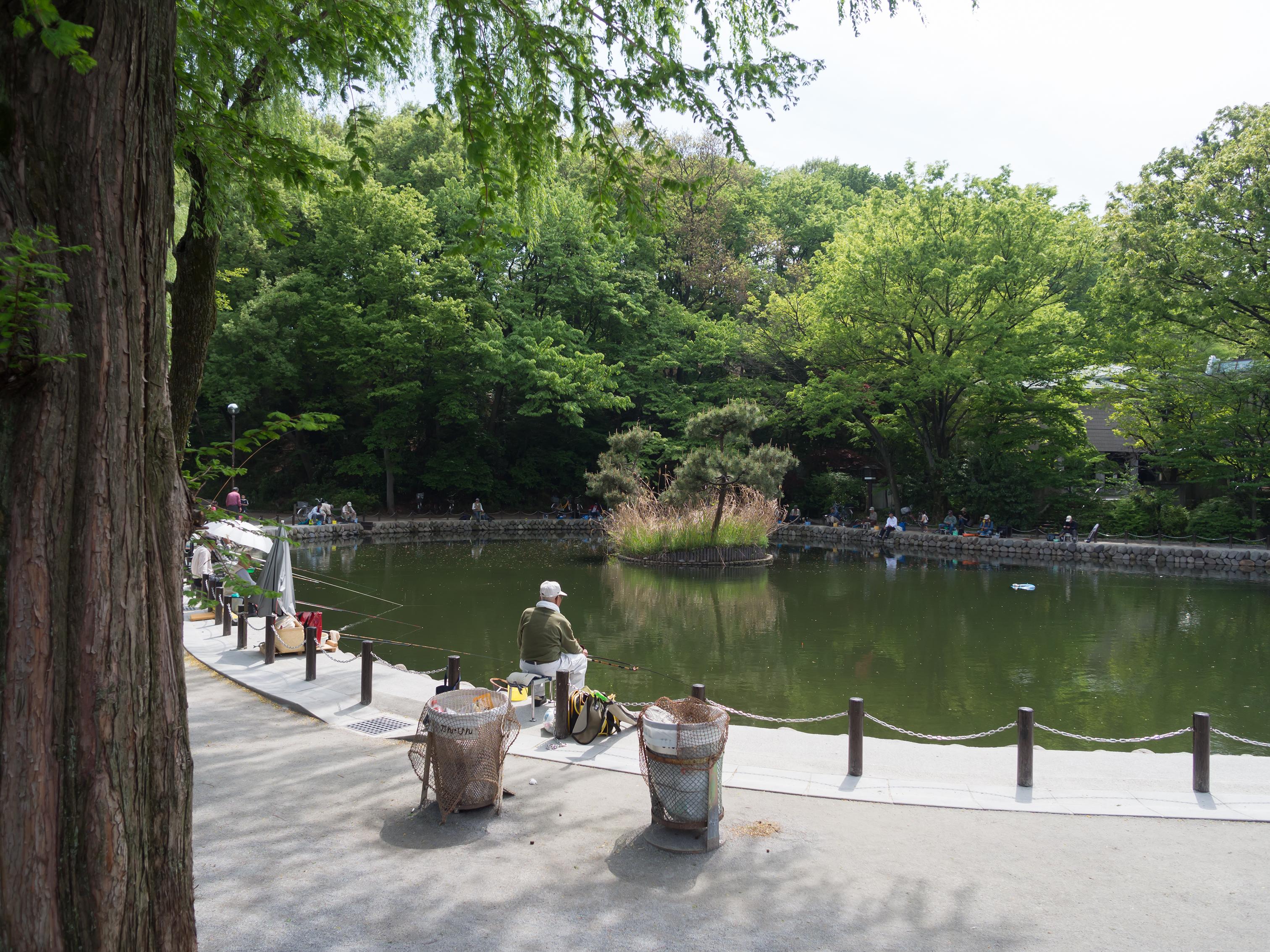 雄蛇ヶ池でバス釣りを楽しもう!貸しボート・駐車場・アクセスまで詳しく紹介!