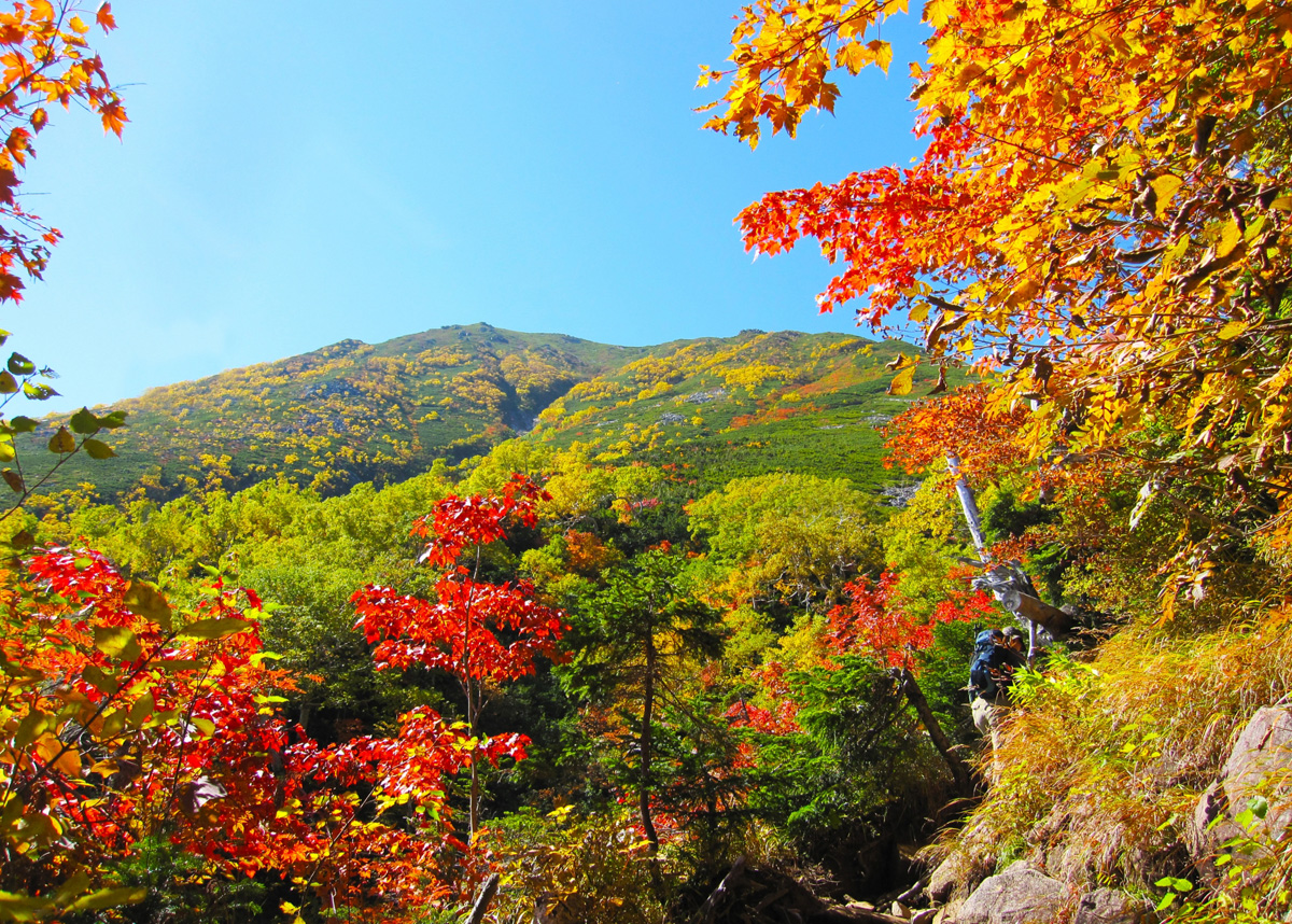 愛鷹山は初心者にもおすすめのハイキングスポット!ルートや駐車場情報は?
