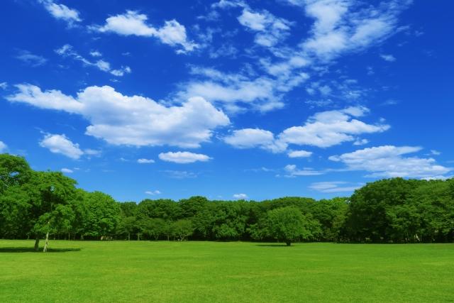 浜松の公園はアスレチックや遊具が充実!デートにもおすすめのスポットは?