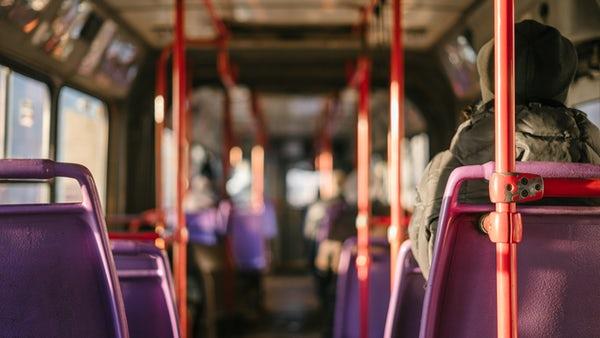 浦安万華郷の楽しみ方やバスで行く方法は?料金や混雑具合も詳しくチェック!