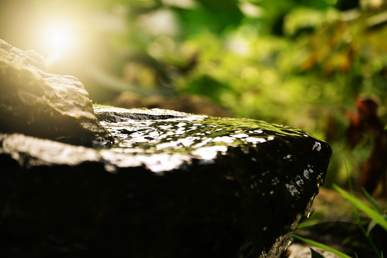 アートビオトープ那須は温泉や水庭を堪能できる人気スポット!口コミの評判は?