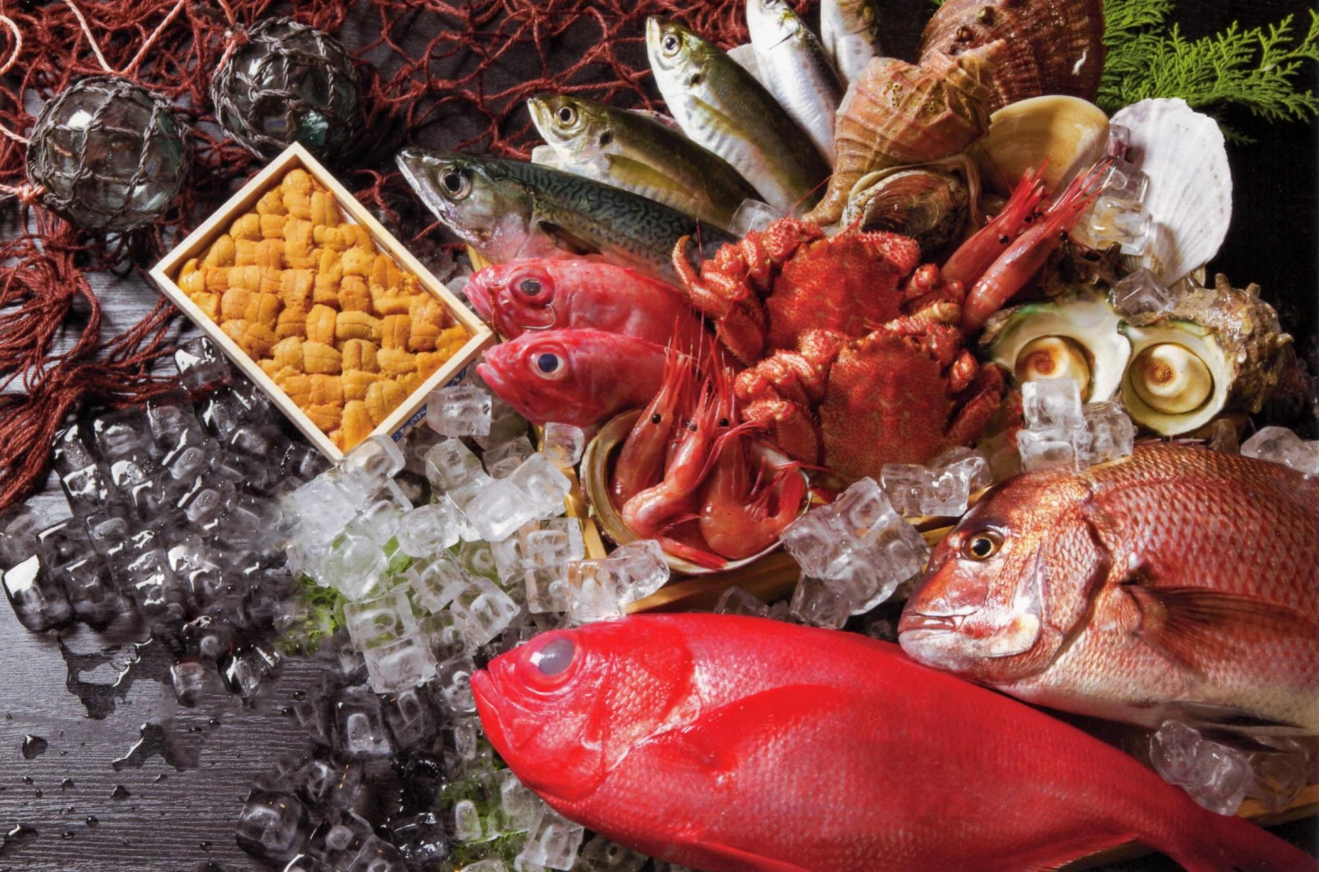 小田原漁港で朝市やランチを楽しもう!おすすめの店やアクセス方法は?