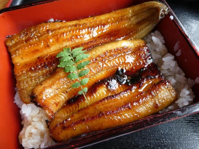 うな善(藤沢)は絶品うなぎを味わえるおすすめ店!人気メニューや値段もご紹介