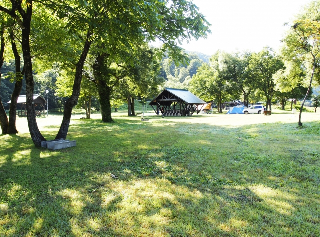 川井キャンプ場は奥多摩で人気!場内施設やアクセス方法も紹介!
