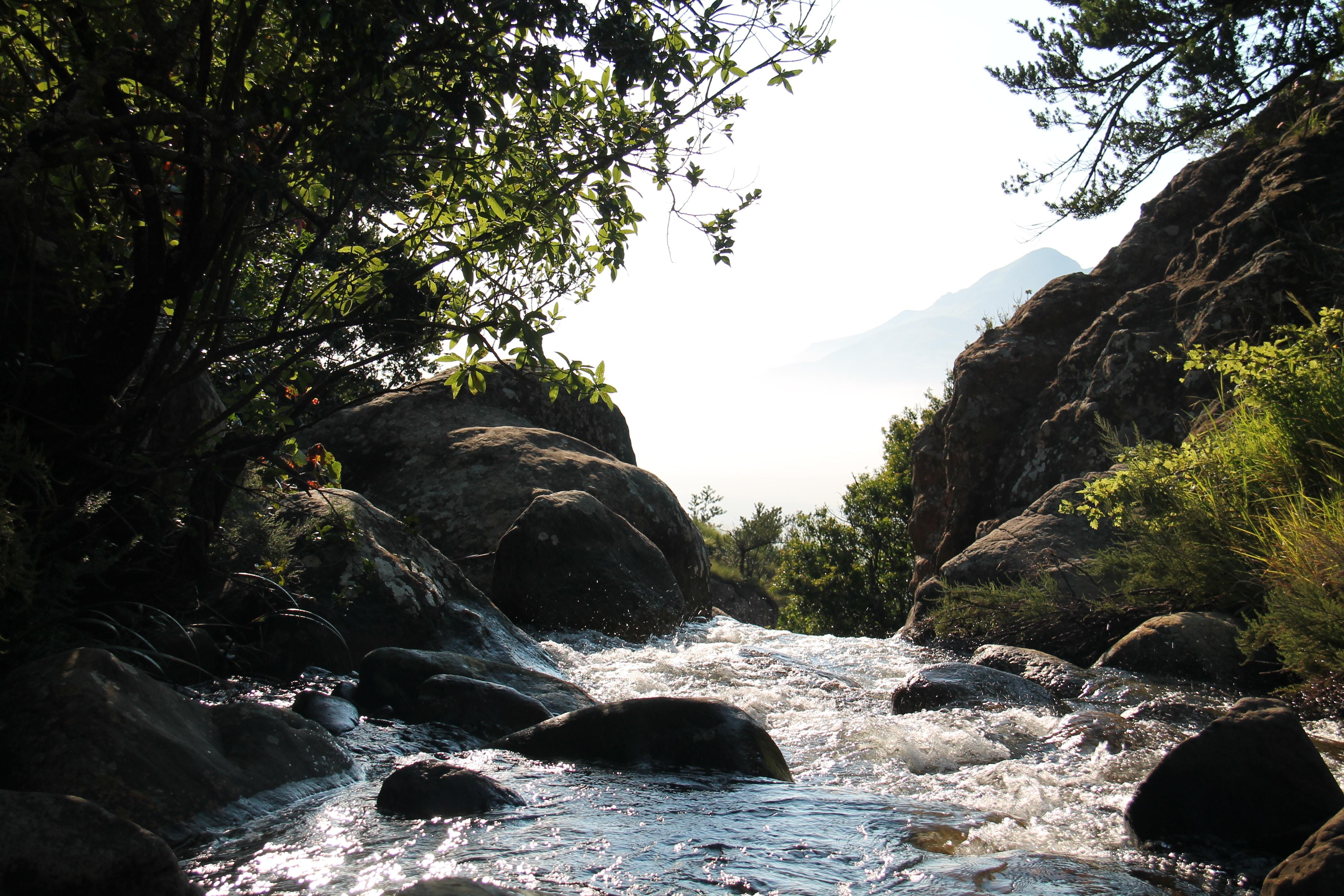 那須渓流パークで遊ぼう!釣り・ゴーカートなどのアクティビティや口コミ情報も!