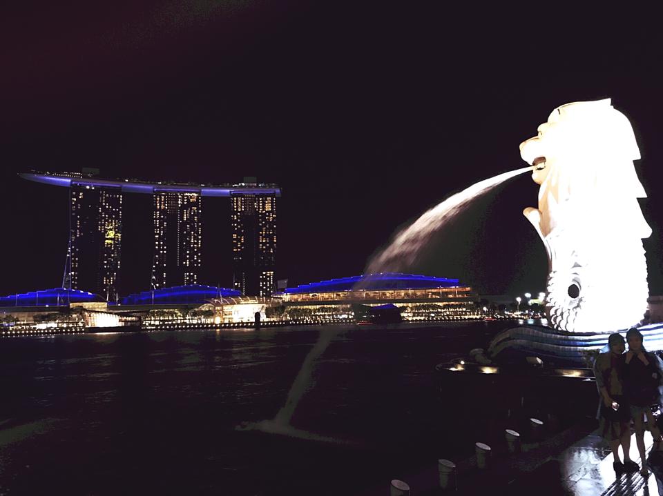 シンガポールのビザ事情を知ろう!種類や申請方法を日本人向けにレクチャー!