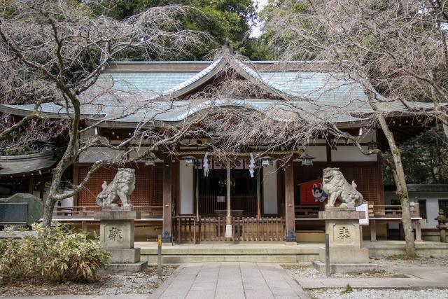保久良神社はカタカムナの聖地&神戸のパワースポット!アクセス方法もご紹介!