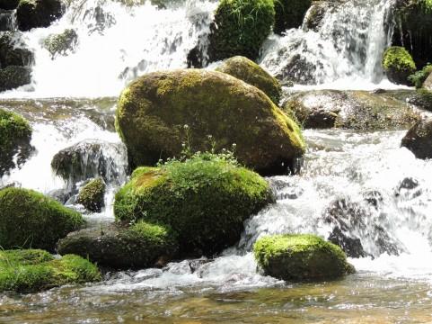 秩父のおすすめ川遊びスポットは?無料で楽しめる場所や穴場もご紹介!