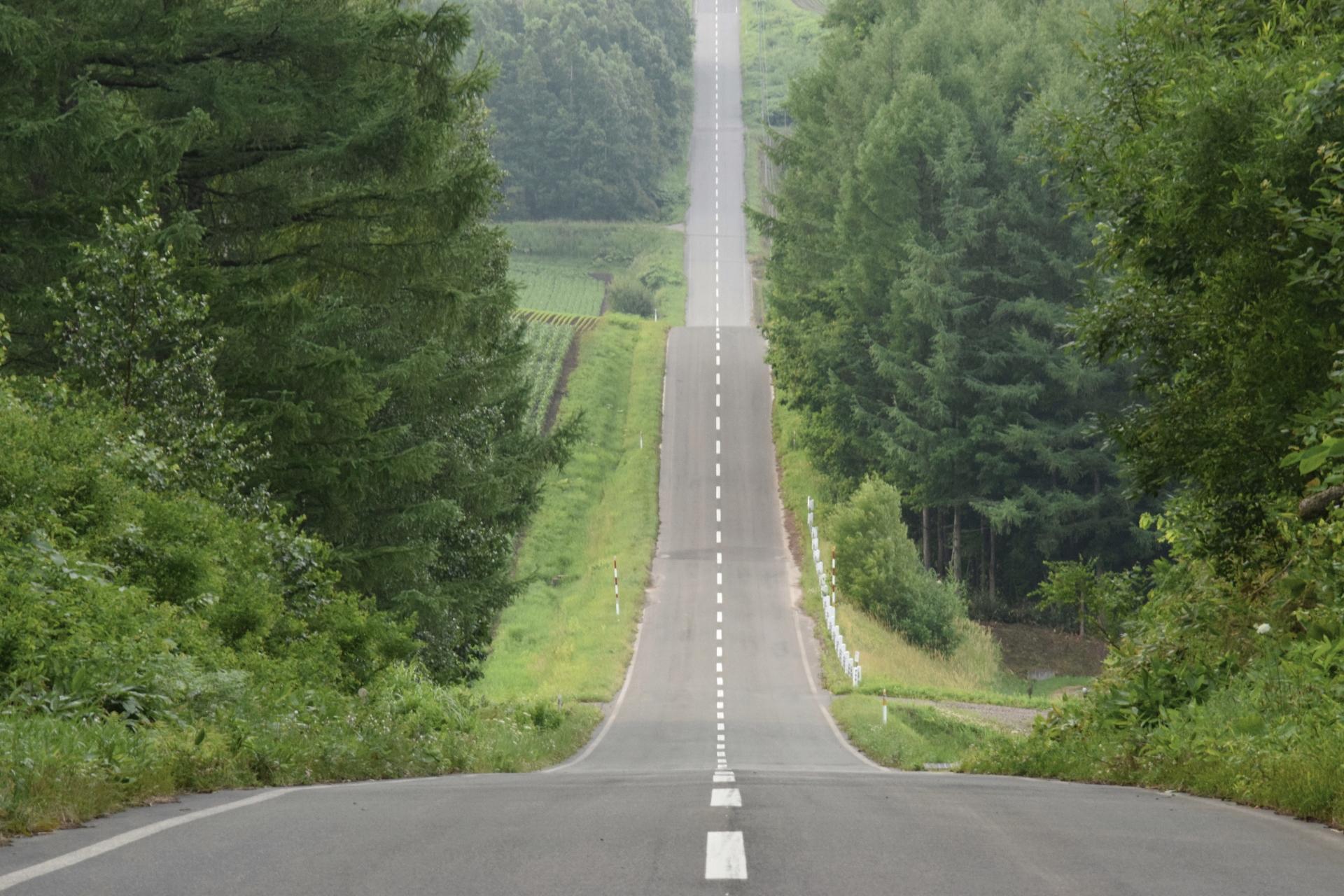 北海道を車で一周しよう!おすすめのルートや費用についても解説!
