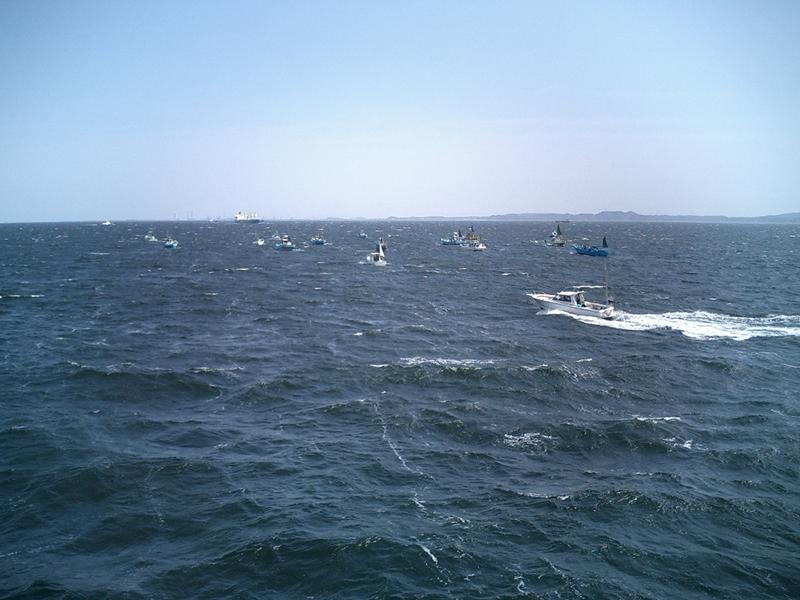 伊江島へはフェリーでアクセス!乗り場や料金に車両の所要時間まで詳しく解説!