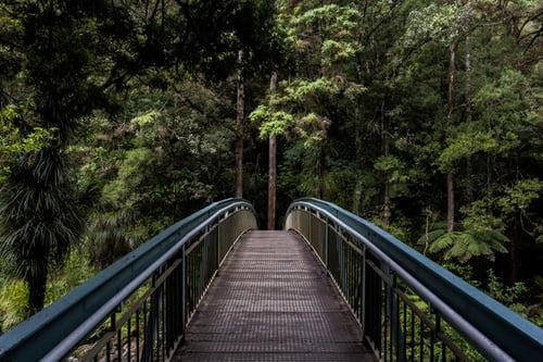志布志のおすすめ観光スポット15選!名所や自然が満喫できる人気の場所もあり!
