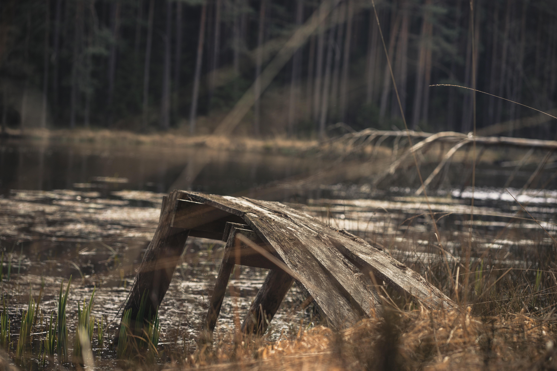 底なし沼は日本にも存在する!安全に脱出する方法や深さを知っておこう!