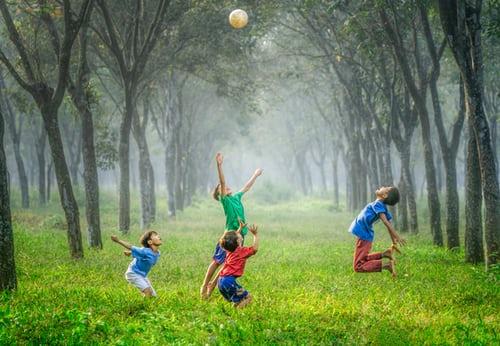 大崎公園は子供動物園・大型遊具が魅力のおすすめスポット!水遊びも楽しめる!