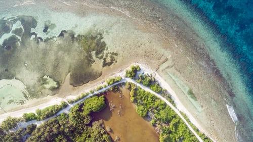 弓削島のおすすめ観光スポットは?ランチがおいしい人気カフェやアクセスも紹介!