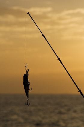 九十九里海釣りセンターは伊勢海老も釣れる人気の釣り堀!ポイント・仕掛けは?