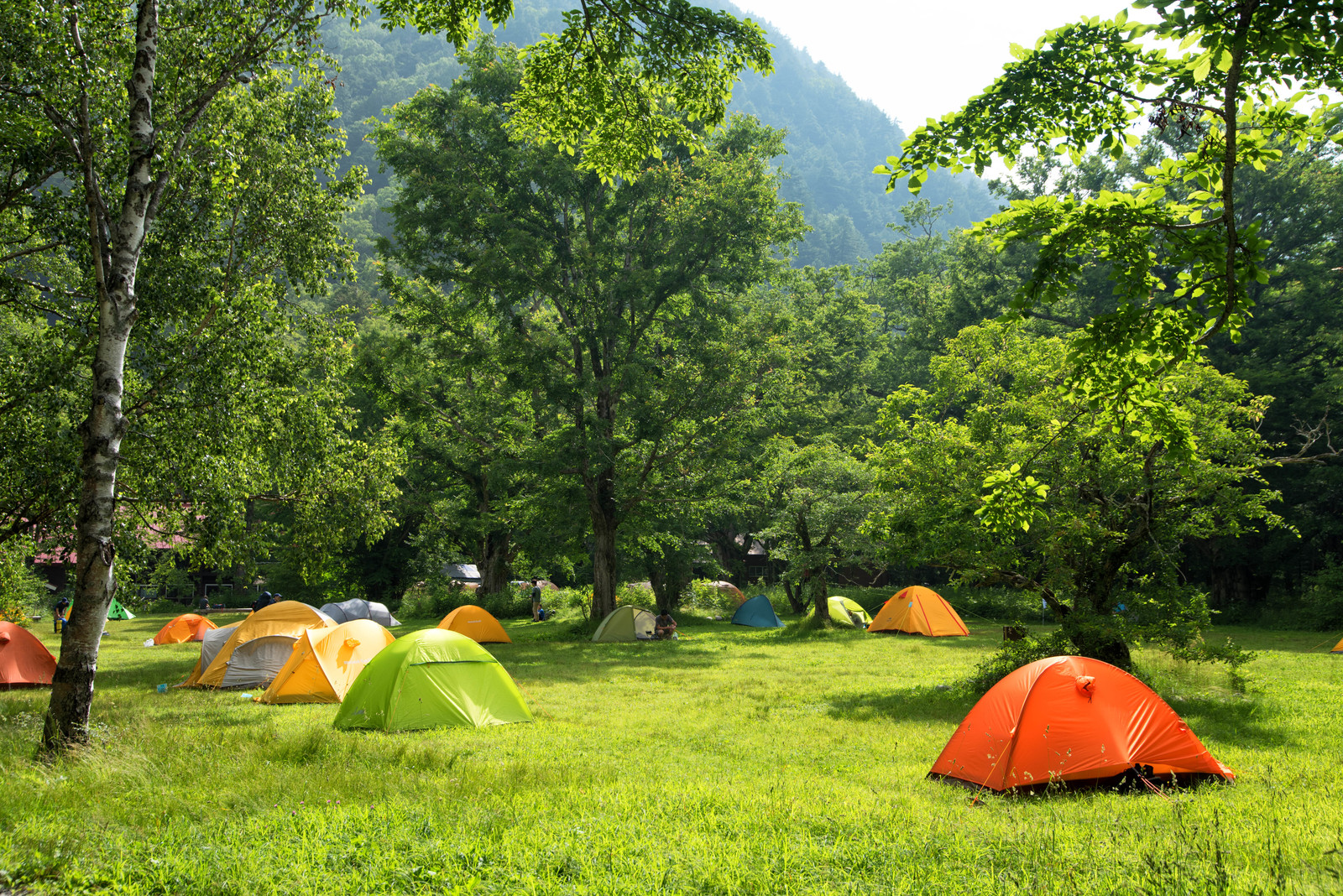 ライジングフィールド軽井沢は人気のキャンプ場!アスレチックや温泉も楽しめる